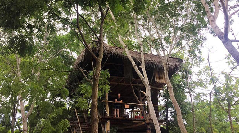 Sri Lanka Tree House