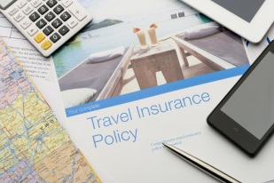 Policy documents for travel insurance comparison
