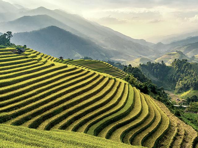 Vietnam Travel Money Guide | Travel Money Oz