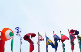 Image of many flags