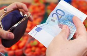 Language of Money - Euro at market