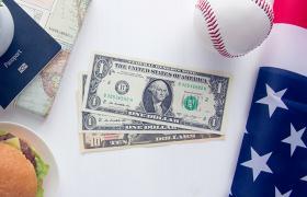 USD on flag